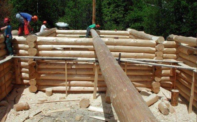 Технология строительства деревянных домов из дикого сруба